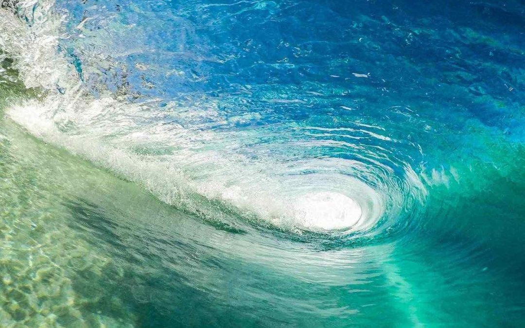 Cavalcare l'onda nel mare del nuovo commercio